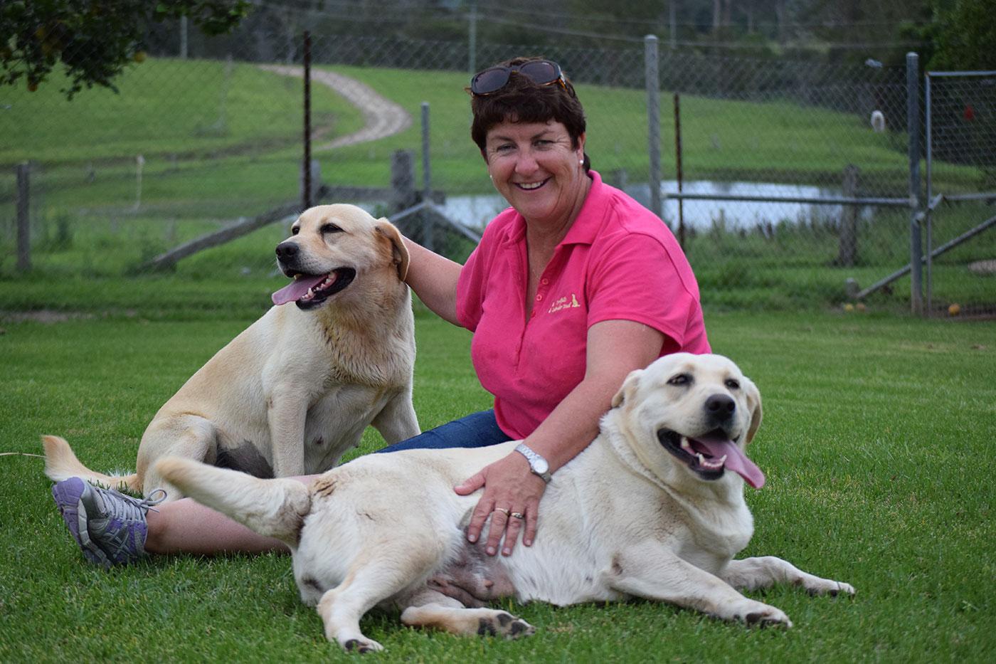 About Dowlfalls Labrador Retrievers – Dowlfalls Labrador